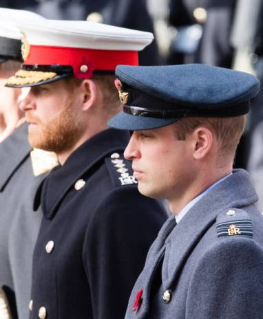 LONDON, ENGLAND - NOVEMBER 11: Prince Harry, Duke of Sussex and Prince William, Duke of Cambridge attend the annual Remembrance Sunday memorial on November 11, 2018 in London, England. (Photo by Samir Hussein/Samir Hussein/WireImage)